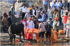 India Travel Photography: Aarti Ceremony, Nada Sadhus & burning Ghats at Varanasi 2019 Benares.037 by Hans Hendriksen (Travel Photography - Reisfotografie) Tags: india travel photography uttar pradesh north noord crowd reisfotografie reisfoto varanasi cremation ghat ghats benares banāras kashi kasi 2019 bad baden bath snan bathing people planet naked naakt naga sadhu saddhu baba nackt hindu hindus hindoe hindoes ganga gangus ganges river rivier march holy heilig sacred ceremony ceremonie religion religie nude dahues babas pelgrims pilgrimage pilgrims bedevaart menigte hindúes sagrado río aarti fire vuurceremonie burning manikarni manikarnika dead reincarnation reincarnatie afterlife