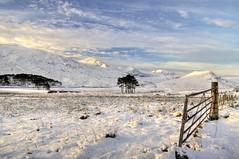 morning - route from Ullapool to Inverness, Highland, Scotland, UK (Janusz W.) Tags: winter scotland scozia sky schottland scotia szkocja landscape snow pentax pentaxk3 morning uk highland
