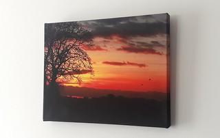 Bockhampton Dusk print sold on its new wall.