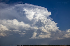 082618 - Updrafts & Anvil 007 (NebraskaSC Severe Weather Photography Videography) Tags: flickr nebraskasc dalekaminski nebraskascpixelscom wwwfacebookcomnebraskasc stormscape cloudscape landscape nebraska weather nature awesomenature storm clouds cloudsday cloudsofstorms cloudwatching stormcloud daysky weatherphotography photography photographic weatherspotter chase chasers newx wx weatherphotos weatherphoto day sky magicsky darksky darkskies darkclouds stormyday stormchasing stormchasers stormchase skywarn skytheme skychasers stormpics southcentralnebraska orage tormenta light vivid watching dramatic outdoor cloud colour amazing beautiful updraft thunderhead stormviewlive svl svlwx svlmedia svlmediawx