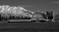 Cherry Hill Farm (arbyreed) Tags: arbyreed monochrome bw blackandwhite cherryhillfarm barn timpanogos mounttimpanogos snow farming rural utahcountyutah