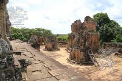 Angkor_Mebon Orientale_2014_31