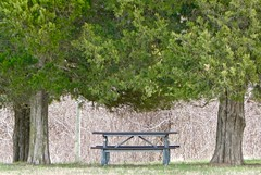 Marshall Hall Landing (krossbow) Tags: picnic table maryland charles county piscataway park national service fort washington marshall hall landing register properties panasonic lumix tz90 zs70 googlemaps google localguides letsguide local guides