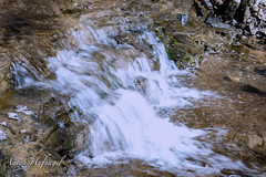 Tiny Fall (Aaron Hufnagel) Tags: nikon nikond600 d600 tokina tokina2870mm tokinaatx atx 2870mm madison madisonindiana cliftyfalls cliftyfallsstatepark indianastatepark statepark nature outdoor water creek stream waterfalls falls