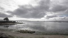 www.vagalumes.es (Jano Sanmartín) Tags: 2019 arousa atlantico invierno playa ponte puente riadearousa riasbaixas terron vagalumes vilanova wwwvagalumeses