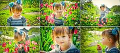 ... (Helen Ivashchenko) Tags: tulip flower girl she cute kid spring child nature