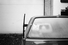 Untitled. (35mm) | Exp. 08/2005 Kodak Professional T-Max 400. (samuel.musungayi) Tags: expired kodak professional tmax 400 candid urban street film 35mm 24x36 135 analog argentique negativo negative négatif negatif scan black white blackandwhite noir blanc noiretblanc monochrome mono life light samuel musungayi samuelmusungayi photography photographie fotografia yashica t5 carl zeiss test shot