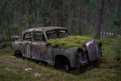 Mooscedes - Benz (mariburg) Tags: marode alt old sonyalpha7ii sonyfe2470mmf4zaoss auto car mercedes mercedesbenz