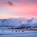 "Arctic sunset • <a style=""font-size:0.8em;"" href=""http://www.flickr.com/photos/127903822@N03/46681578475/"" target=""_blank"">View on Flickr</a>"