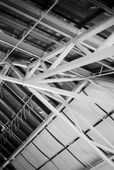 Under the Ceiling (JamieDieu) Tags: 35mmfilm blackandwhite ilford dslrscan