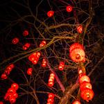 Chinese lights thumbnail