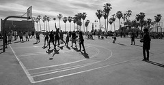 Basketball, Venice Beach, LA (jonasfj) Tags: nikonz7 z7 nikkor 24704s 2470 venicebeach santabarbara la losangeles california ca us usa basket basketball game friendly silhouette silhouettes court palmtrees palm tree trees sky bw blackwhite monochrome goal sunday afternoon sunset action score shadow shadows sports ball coach