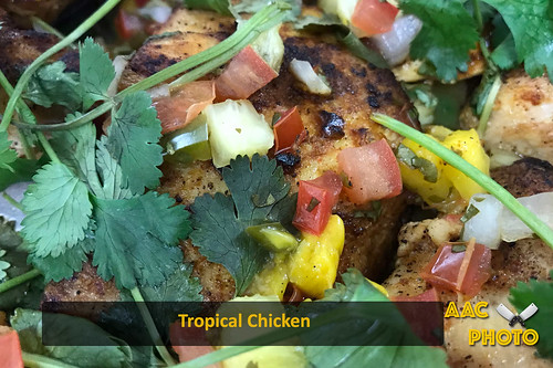 "Tropical Chicken • <a style=""font-size:0.8em;"" href=""http://www.flickr.com/photos/159796538@N03/46876586444/"" target=""_blank"">View on Flickr</a>"