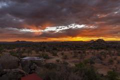 _RJS3535 (rjsnyc2) Tags: 2019 africa d850 himba landscape namibia night nikon outdoors photography remoteyear richardsilver richardsilverphoto safari sunset travel travelphotographer animal camping nature sky stars tent wildlife