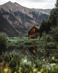 ↟  explore more pics by Woodland, wilderness and cabins... (freewayzone) Tags: travel nature explore vaction trilifestyle fitness instagood motivation fit gym healthy health photooftheday workout training bodybuilding eatclean strong determination cardio fashion fitspo diet active healthychoices fitnessaddict exercise getfit train cleaneating fitnessmodinspiration love life quotes art like beautiful lifestyle follow success motivationalquotes inspire inspirationalquotes fitel instahealth