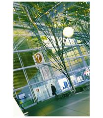 _PXK0919bwtm (Concert Photography and more) Tags: 2019 february japan tokyo yurakucho street streetphoto people building architecture lights colors corssprocessing incamerafilter pentax pentaxk1 pentax50mmf14 k1iihdpentaxfa50mmf14sdmaw liveationhero outdoor silouhette
