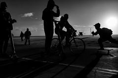 L1000241-Edit (Eduardo Acosta Photography) Tags: ambulantphotographer beach leicaq ocean people sand santamonica seagulls street water pier