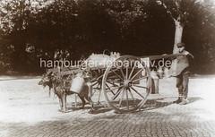 bildarchiv-hamburg-com_iKURaysKs9 (stadt + land) Tags: hunde hund bilder fotos arbeitshund historisch früher aufgabe transport alte fotografien