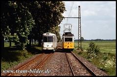 56-1992-05-24-Ausweiche km 11 (steffenhege) Tags: gotha thüringerwaldbahn überlandbahn strasenbahn streetcar tram tramway historischertriebwagen historischerzug duewag gt6 56 408