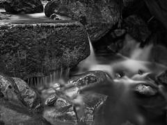 Trickle BW (SGarriott) Tags: sgarriott scottgarriott olympus omd em5ii 1240mmf28 nature natur creek stream water flow norway norge rocks stein vann bekk bw blackwhite blackandwhite monochrome longexposure