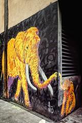 L'amour maternel (Isa-belle33) Tags: wall mur urban urbain city ville elephant colors couleurs bordeaux fujifilm street streetphotography streetart streetartbordeaux animal