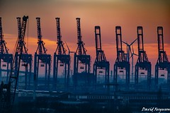 Harbour Cranes at Sunset (Daveoffshore) Tags: germany hamburg crane harbour sunset line silouette industry ship