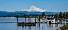 Mount Hood, Oregon 11,249 ft (maytag97) Tags: mounthood maytag97 nikon d750 mount hood oregon usa america spring season columbia river columbiariver boat house boathouse pano panorama