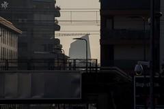 Torre Diamante. Milano (diegoavanzi) Tags: milano milan italia italy lmbardia lombardy grattacielo skyscraper torre diamante canon eos7d