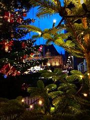 Kerstmarkt Bremen... #2018#december#bremen#rathaus#christmas#christmasmarket#market#bremermoment#tree#christmastree#present#night#street#streetphotography#photography#city#cityphotography#instamoment#instadaily#photooftheday#love#travel#explore#see#beauty (agnes.postma.hoogeveen) Tags: photooftheday love loveit beauty city bremermoment streetphotography christmastree bremen see world street december cityphotography rathaus explore christmasmarket night tree instadaily christmas market 2018 instamoment present travel photography
