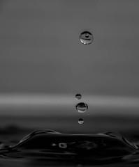 goutte (Laurent Hutinet) Tags: goutte water macro eos6dmacro eos6d tamronsp60mmf2macrodiii nature waterdrop