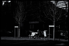 2019-01-20-Liège-62px (Pontalain) Tags: anyvision atmosphere black blackandwhite branch city darkness labels light midnight monochromephotography night photography plant road snapshot street style urbanarea white banc contrejour house monochrome seul sky tree liège provincedeliège belgique be