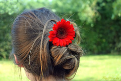 Flowers and joy... (Maria Godfrida) Tags: lookingcloseonfriday hair woman flower closeup bokeh brownhair red people flora backsideportrait