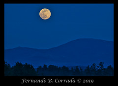 Worm Moon 20MAR2019 (8160) (fbc57) Tags: moon supermoon moonrise wormmoon landscape astronomicalevent astronomy astrophotography vermont southburlington nikond850 nikon200500f56eedvrafs