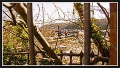 Bangor Station - 29th (peterdouglas1) Tags: valleyflasks 6d43 bangorstation bangor fencing directrailservices class68 68034 victorious class88 88009 diana