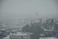 Seattle Snowmageddon 2019 15 (C.M. Keiner) Tags: seattle washington usa city cityscape skyline mountains pacific northwest puget sound snow blizzard winter storm urban