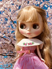 Cherry blossom time 🌸 Claire changed into her pretty Barbie pink gingham dress to enjoy a walk in the park. (Warm filter used) (Painters Life) Tags: barbiefashion cherryblossoms gingham pink blythe takara clearlyclaire