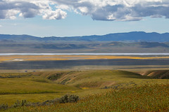 View from Wallace Creek Trail (Teresa_J) Tags: carrizo plain national monument apr 2019