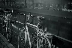 bokeh 2@Kö-Graben, Düsseldorf (Amselchen) Tags: bicycle bokeh blur dof depthoffield city light bnw mono monochrome blackandwhite sony ilce7rm2 fe55mmf18za