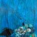 """""""Happy Fish"""" by Kymberley P, mixed media, $250.00"""