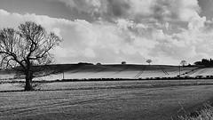 Fields preparation (john29ch) Tags: photosofengland landscape bnw countryside