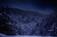 Le notti di una volta (Gio_guarda_le_stelle) Tags: nightscape stars night winter snow cold frozen ice trees notte gelo fuoco artwork i mountainscape sila italy tripod blue dark