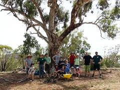 Mulching gang 20190120