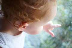 dream baby (Too busy with Doctors' appointments) Tags: toddler