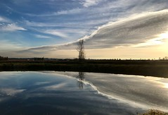 (Ian Threlkeld) Tags: pittmeadows nature explore explorebc bc irt