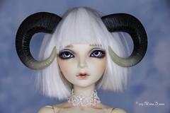 Ram horns MSD (AnnaZu) Tags: ram translucent tip msd horns minifee magnetic black fairyland sircca bjd abjd balljointed doll polymer clay accessoires