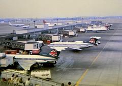 Hybrid BA & BEA livery Trident line up at London Heathrow airport (heathrow.junkie) Tags: lhr londonheathrow queensbuilding heathrow gavfk trident trident1 trident2 britishairways