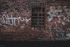 Windows... (hobbit68) Tags: windows fenster fujifilm xt2 gebäude gemäuer mauer wall gitter gitterstäbe ziegelstein ziegel graffiti strasse street old alt vergessen verlassen lost