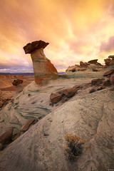 Chocolate Factory (Yan_Zhang) Tags: southwest stud horse point page arizona desert landscape