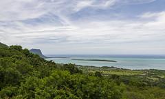 Chamarel viewpoint, Mauritius / Обзорная площадка Шамарель, Маврикий (dmilokt) Tags: природа nature пейзаж landscape гора лес небо облако пальма дерево mountain forest sky cloud palm tree море океан sea ocean dmilokt