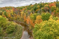 Autumn in 16 Mile Creek (SewerDoc (3 million views)) Tags: autumn fall forest creek ravine landscape trees oakville ontario canada nature